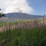 Natura Etna vulcano